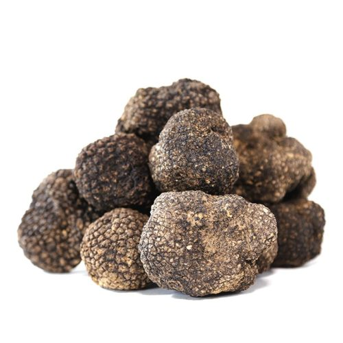 Summer Black Truffle Fresh